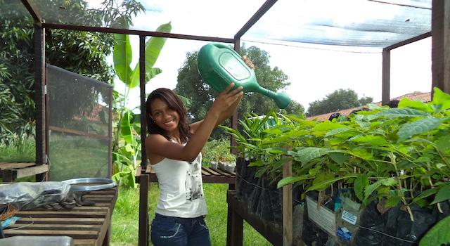 Horta caseira e pintura sustentável