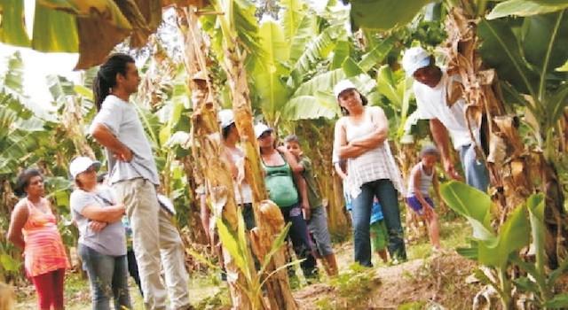 Moradores da Comunidade Cândida visitam Araçuaí Sustentável