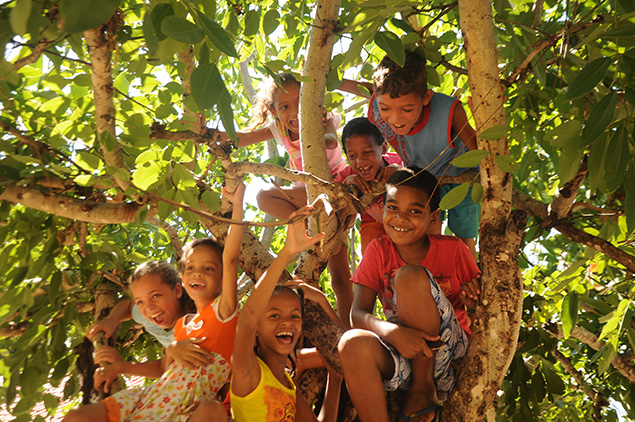 Crianaças se divertindo na árvore
