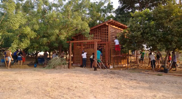 Comunidades rurais se mobilizam para criar Centros de Excelência em Educação no Campo