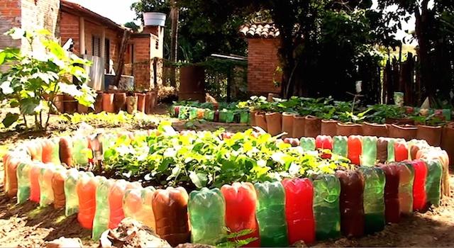 A horta mandala