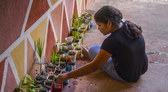 VALE: Projeto Nos Trilhos do Desenvolvimento